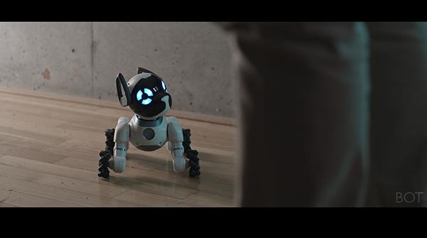 Screenshot from Bot. Dir. Daniel Hoffmann. Germany, 2018, 20:34