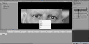 Screen shot of Cutting Room software in action