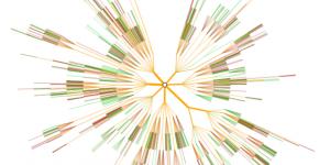 Monte Carlo Tree Search Visualisation